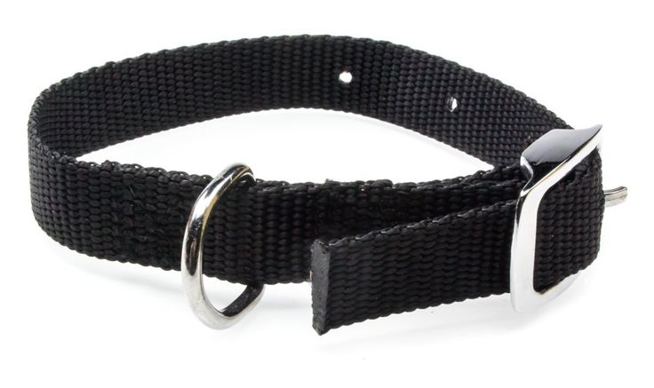 """Best Value Small Adjustable Dog or Cat Collar 12"""" Black. Belt-Style Clasp. Made of Durable, 1/2 Thick Nylon. Cheap but Reliable Collars for Tiny cats From Disco cats. ^^ Stop everything and read more details here! : Cat Collar, Harness and Leash"""