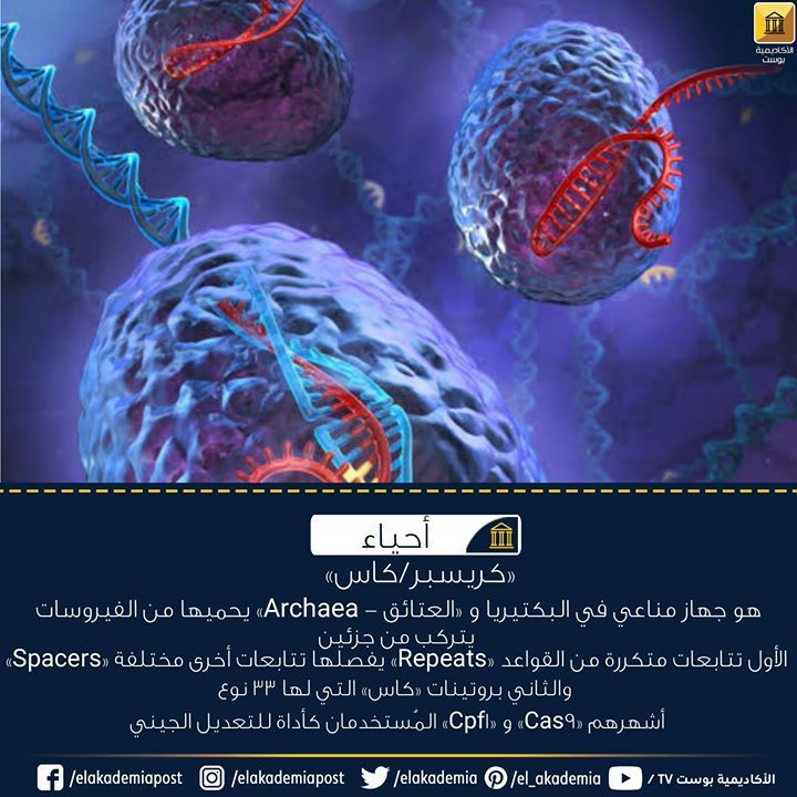 كريسبر كاس هو جهاز مناعي في البكتيريا و العتائق Archaea يتركب من جزئين الأول تتابعات متكررة من القواعد Repeats يفصلها تتابعات 90 S Pandora Screenshot Pandora