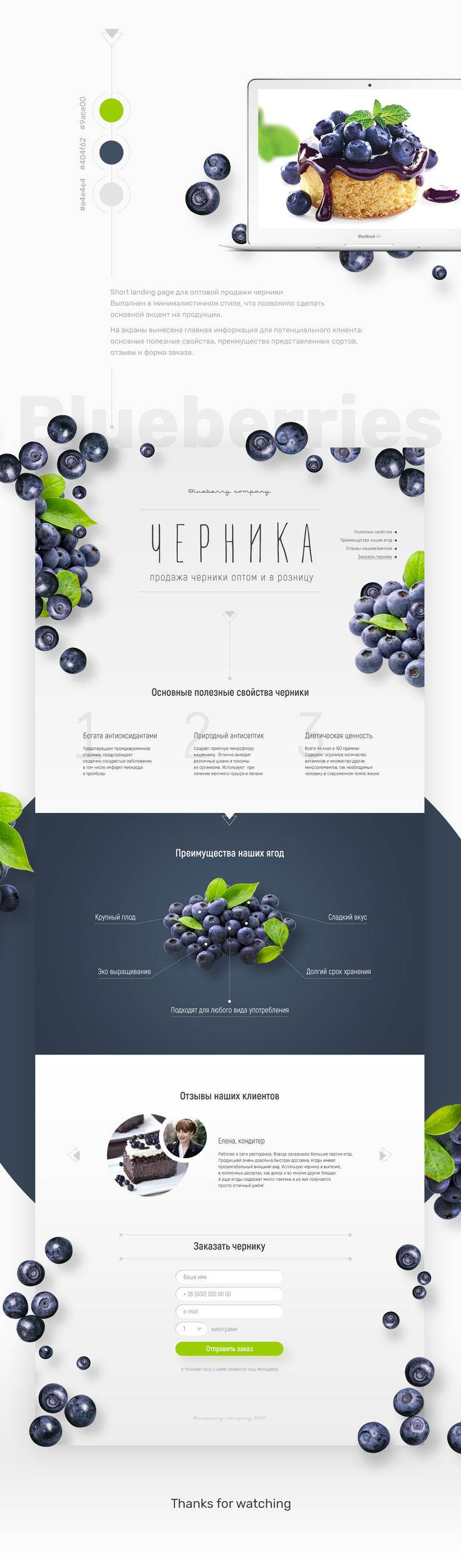 Landing page Blueberries on Behance