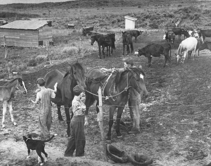 Alfred Eisenstaedt (Tczew, 6 dicembre 1898 – Massachusetts, 24 agosto 1995): Farmer John Barnett and his sons work their farm, Oklahoma, 1942