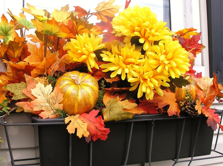 The 40 Best Images About Window Boxes On Pinterest Blossoms Adorable Decorating Window Boxes For Fall
