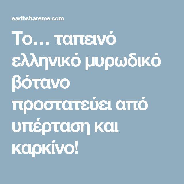 Το… ταπεινό ελληνικό μυρωδικό βότανο προστατεύει από υπέρταση και καρκίνο!