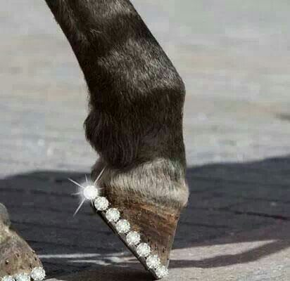 Just a little #bling...I am totally going to do this to my #horse, Runic!