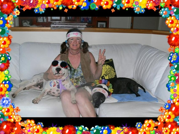 1st SPOT PRIZE - Boogy Woofy Competition! This entry won a gift hamper - http://www.thedogline.com.au/gift-baskets-1/Dog-xmas-gift-basket Enter now and WIN!