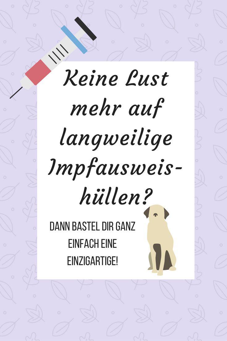 378 besten DIY - Rund um den Hund Bilder auf Pinterest | Hunde ...