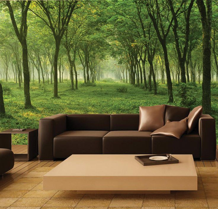 Wall MURAL Green Forest Wall Paper, Self Adhesive Wall Covering, Peel And  Stick Part 44