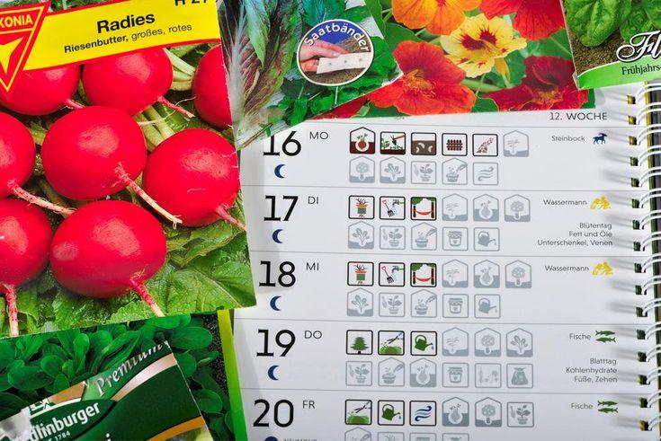 Mondkalender für den Garten zum Herunterladen
