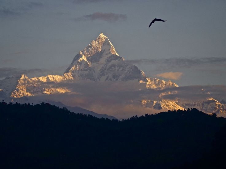 Mt Fishtail, view from Pokhara, Nepal