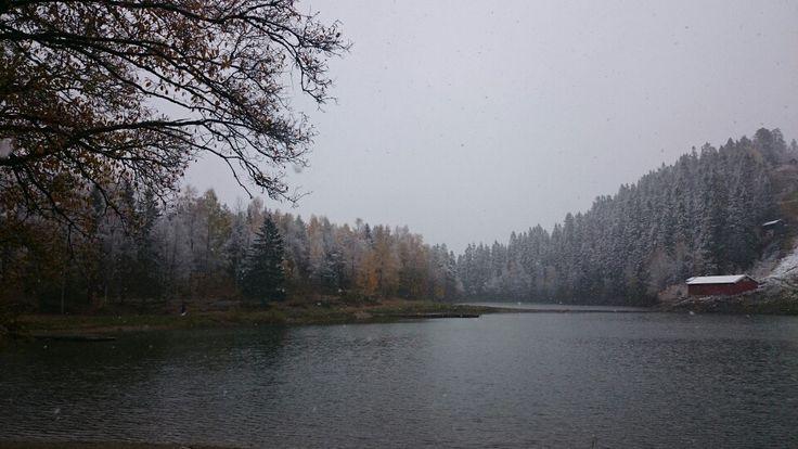 Ready for winter in Oslo (Lillomarka)