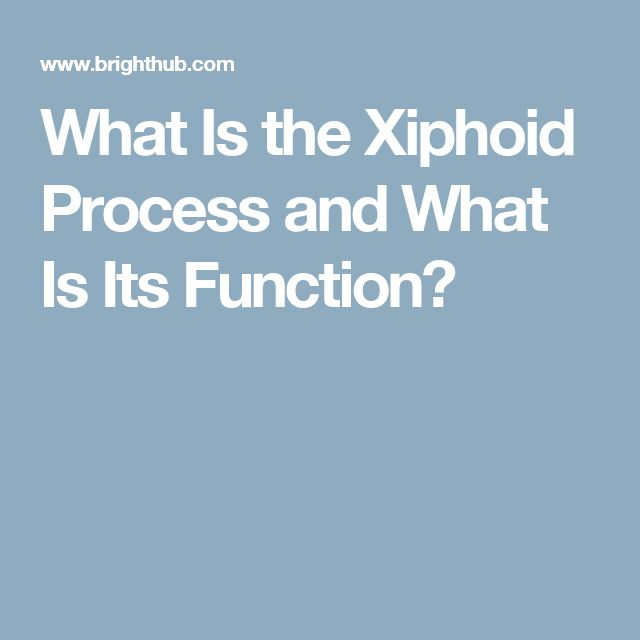 What Is the Xiphoid Process and What Is Its Function?