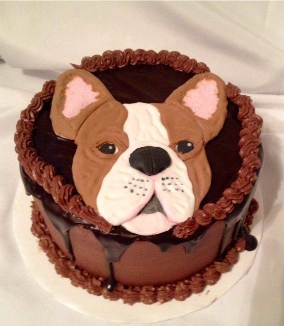 2D French bulldog - Cake by Caroline Diaz
