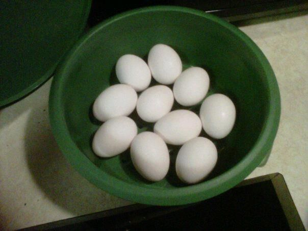 PERFECT HARD BOILED EGGS Place 10-12 eggs in your Tupperware SmartSteamer place in the Microwave.. 10 min for 10 eggs - 12 min for 12 eggs!! Let stand 5 minutes after steaming. No green rings.. Perfection the shells slip right off!