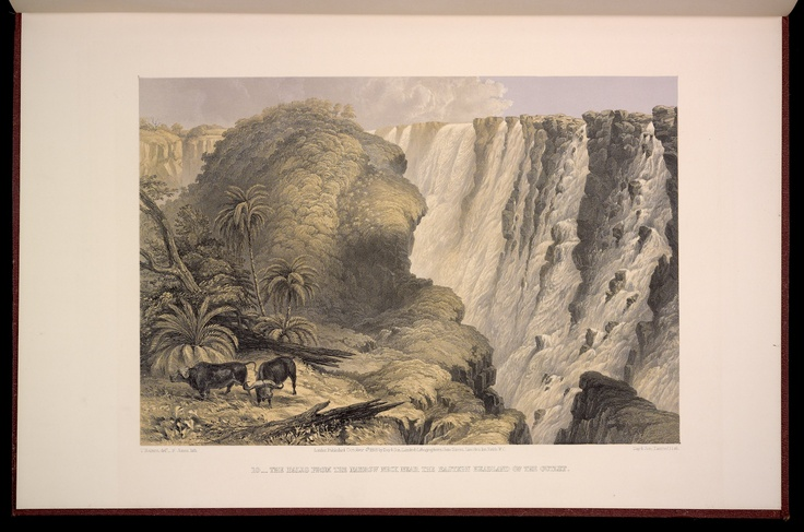 Plate 10: The Falls from the Narrow Neck Near the Eastern headland of the Outlet.