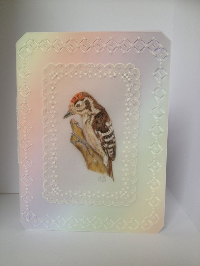 Cute little bird £5.00