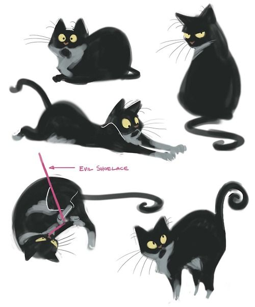211: Page of Papi Had some down time at work this morning so I did some quick sketches of my kitty Papillon. ★ Find more at http://www.pinterest.com/competing/