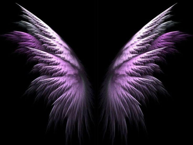 lila engel flügel Vektorgrafik
