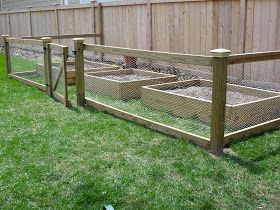 Fence with chicken wire