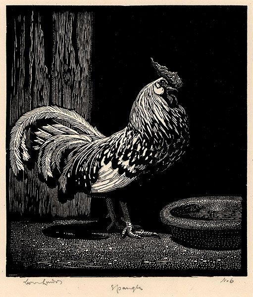 "Lionel Lindsay Australian, 1874-1961 Spangles, 1925. Wood engraving, signed, titled and editioned ""6"" in pencil in lower margin"