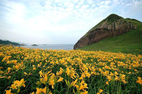 Oonogame, Sado island, Japan