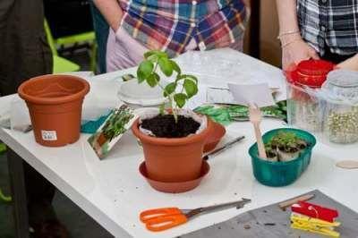 orto in ufficio - coworking login - gardening at work
