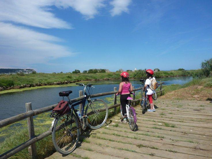 6 Best Biking Holiday Destinations | Travels