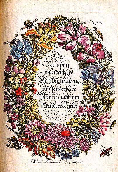 """VIVOS VOCO: Т.А. Лукина, """"Мария Сибилла Мериан"""" - Цветочный натюрморт... и естественнонаучная иллюстрация"""
