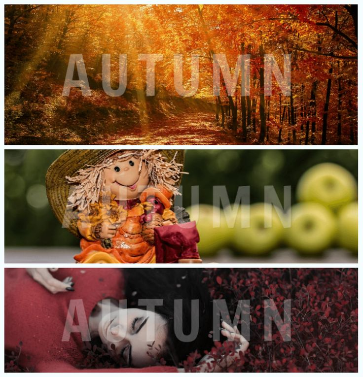 GOOGLE Covers - Autumn-themed