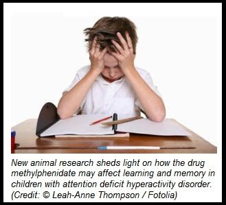Study Pinpoints Effects of Different Doses of an ADHD Drug; Finds Higher Doses May Harm Learning -  Pinned by @PediaStaff – Please Visit http://ht.ly/63sNt for all our pediatric therapy pins