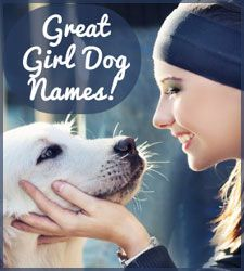 It's about that time to get a sweet puppy. The litter due in Sept. So excited. I like the names Bailey, Lexie, Lacey, and Maya