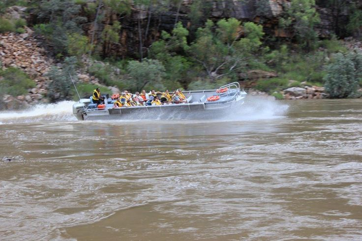 Take a fun powerboat journey through Katherine Gorge in Nitmiluk National Park. The wet season is the only time power boating is available, with the flood waters creating the perfect water adventure. Northern Territory Australia.