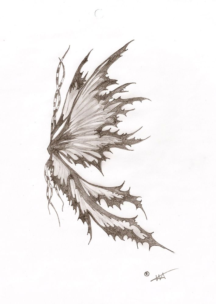 Fairy wing by TheooDore.deviantart.com
