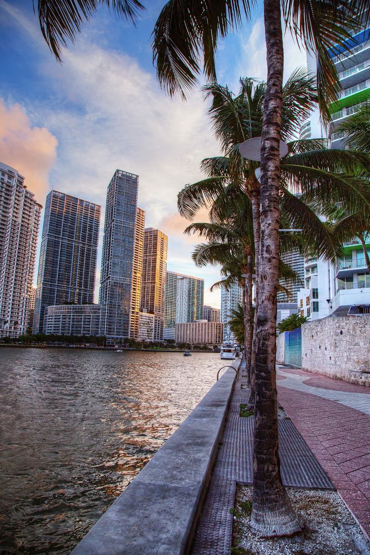 Downtown Miami | view of Biscayne Island