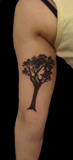 63 Best Tree Tattoos Images On Pinterest