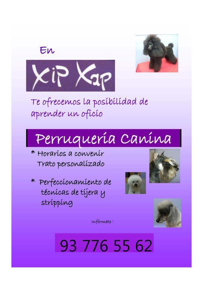 XIP XAP Perruqueria  Susan Armengol  Martorell - Barcelona