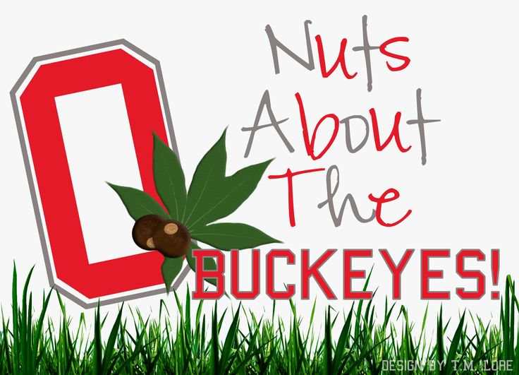 Love my Buckeyes!!