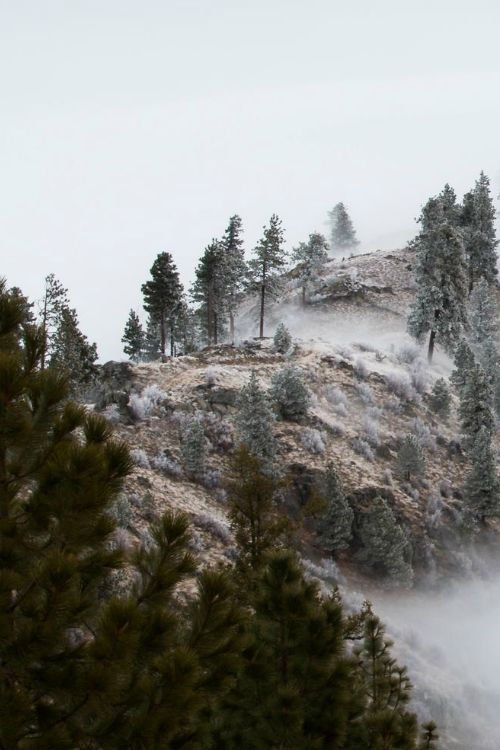 stvdy: Chelan, Washington (Andy Simonds)