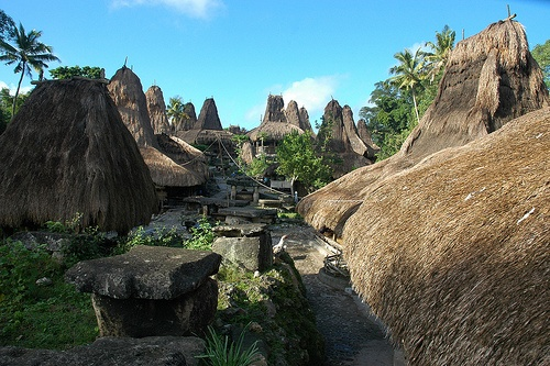 Tarung. Tarung is one of many traditional villages on Sumba Island - Indonesia by Ng Sebastian