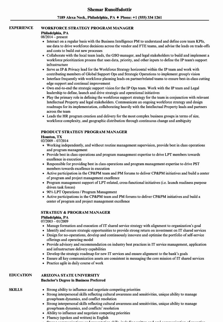 25 It Program Manager Resume Job resume examples