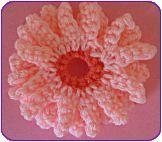 gehaakte bloem en ster in het Nederlands