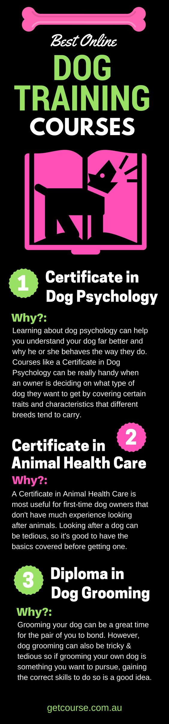 Best Online Dog Training Courses Why