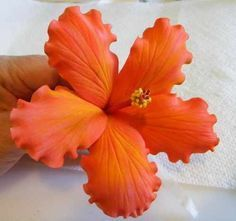 HIBISCUS TUTORIAL - this is done with flower paste (frosting?) - why not with clay? #hibiscus #tutorial There are other flower tutorials on this site. I can see us all making the petal molds for these flowers.