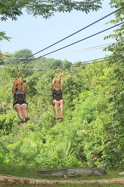 Take your family fun to the new heights with an action-packed day of zip lining through Mexico.