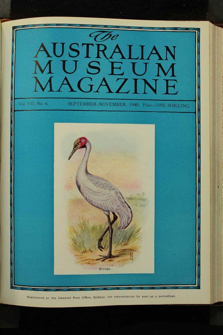 Australian-Museum-Magazine. The Brolga or native Companion. Illustrator: Lilian Medland. http://australianmuseum.net.au/Australian-Museum-Magazine-1921-1942//