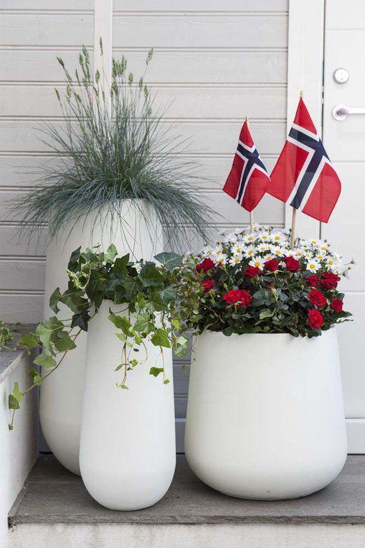 17. mai nærmer seg med stormskritt. Da er det mange som ønsker å plante og pynte ferdig uteplassen. Vi gir deg tips til hvordan du kan pynte med blomster ute til den store nasjonaldagen.