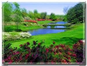 1000 images about bellingrath gardens on pinterest for Bellingrath coupons