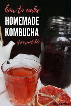 How to Make Organic Homemade Kombucha (+free printable!) | Home for the Harvest #kombucha #buch #organickombucha #homemadekombucha #fermentation #fermentedtea #fermented