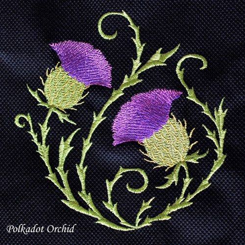 scottish thistle - Google Search