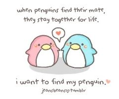 Penguins <3