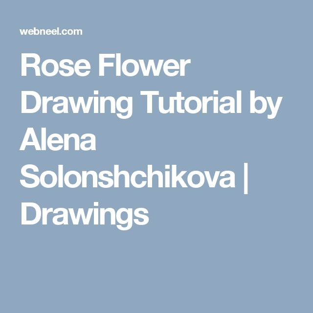 Rose Flower Drawing Tutorial by Alena Solonshchikova  | Drawings