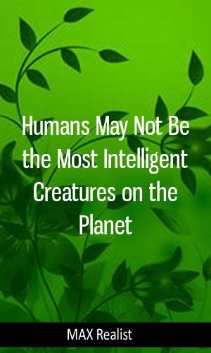 Humans May Not Be the Most Intelligent Creatures on the